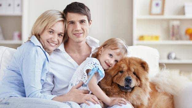 Wills & Trusts dog-young-family Direct Wills Huntingdon